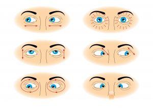 esercizi occhi: ginnastica oculare